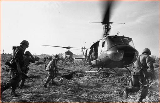 Forced landing de Terry Fincher.