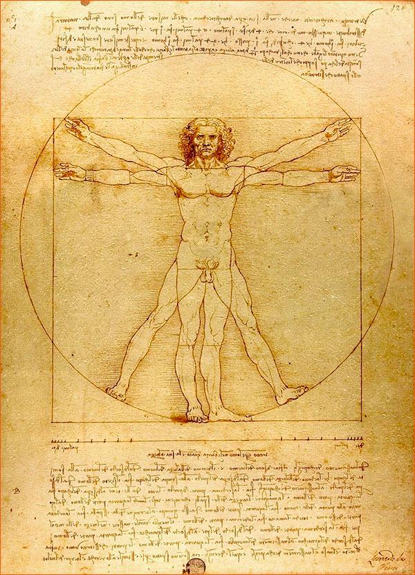 L'Homme de Vitruve de Léonard de Vinci.