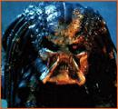 Predator de John McTiernan.