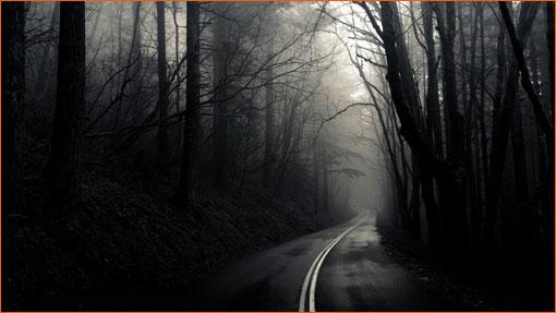 Into the Mist de Greg Martin.